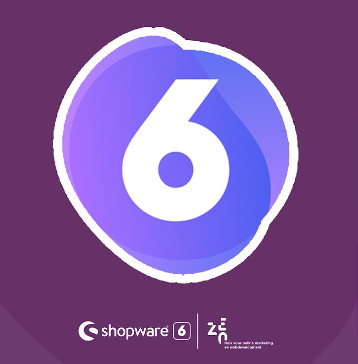 Wie wijst de weg naar succes met Shopware 6?